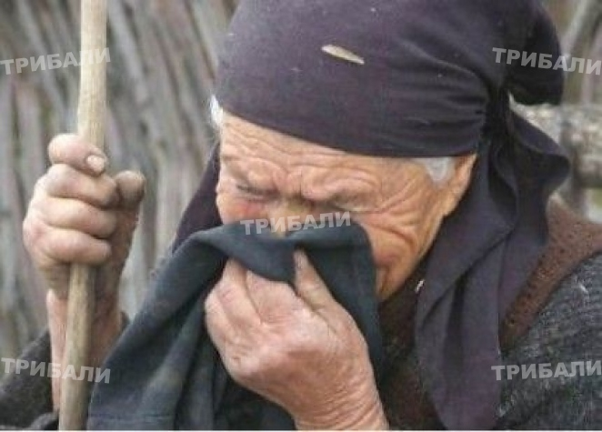 Гладна старица обра магазин в Мездра