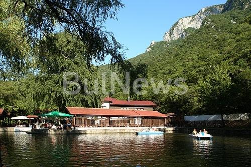 """Огромно чудовище лежи до езерото край """"Чайка"""" във Враца, персоналът тича с ножове /снимки/"""
