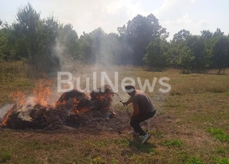 Подпалиха продукцията на земеделец от врачанското село Косталево, научи първо