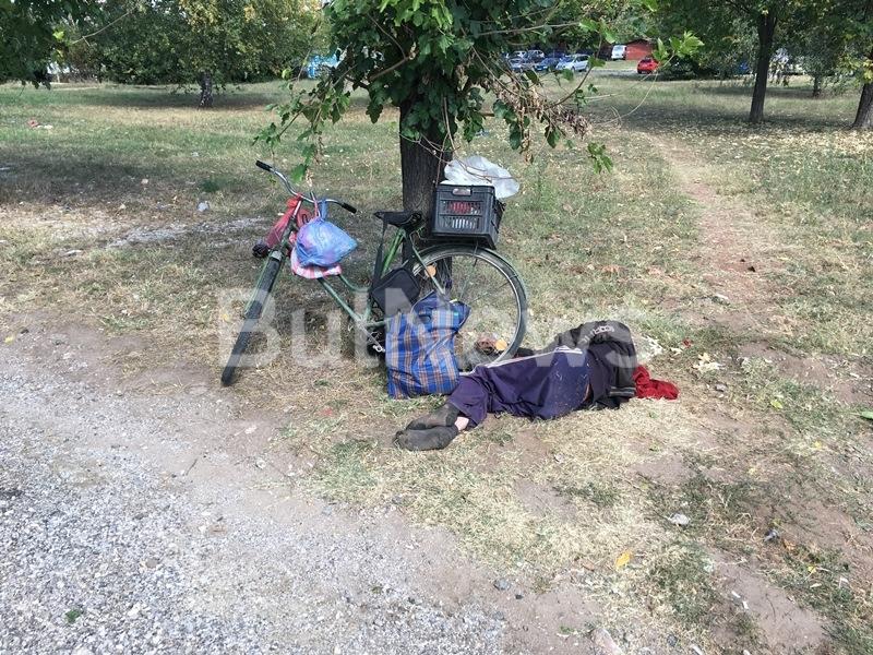 Възрастен мъж лежи в безпомощно състояние до крайпътно дърво на